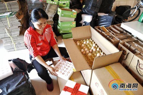 陈少芳在合作社线下的门店打包着鸡蛋准备发货。南海网记者 姚皓 摄