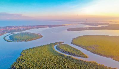 图为海南东寨港国家级自然保护区,红树林连片浓绿,蜿蜒出海。