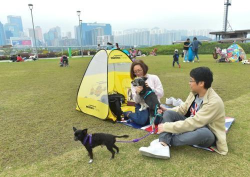 狗主人与宠物同游公园,席地野餐。图片来源:香港特区政府新闻网