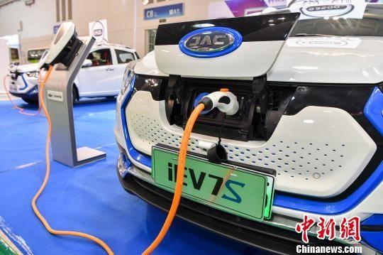 图为电动汽车和充电桩亮相车展。(资料图) 骆云飞 摄