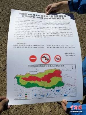 图为阿里日土县森林公安准备张贴的禁入羌塘国家自然保护区告示达瓦扎西 摄