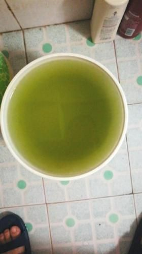像绿豆汤一样的自来水。受访者供图