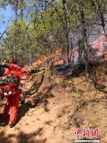 图为森林火灾现场。图片来源:鹤庆县政府新闻办官方微博