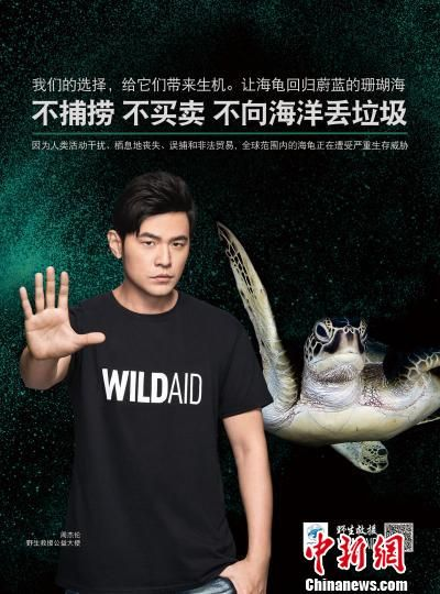 野生救援携手周杰伦 公益广告
