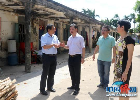 海南省侨联党组书记、主席黎才旺带队到华侨农场调研。 陈苏�b 摄