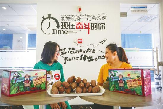 文昌市人才创业孵化基地为文昌青年创业项目、小微企业入驻提供帮助。