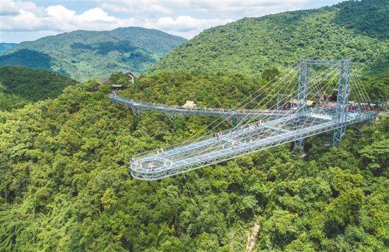海南呀诺达雨林文化旅游区玻璃观景平台。 本报记者 武威 摄