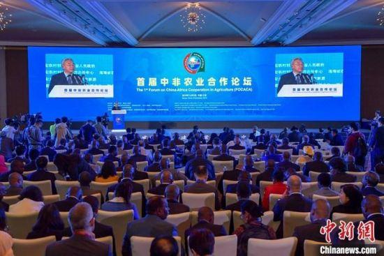12月9日,首届中非农业合作论坛在海南三亚开幕。中新社记者 骆云飞 摄