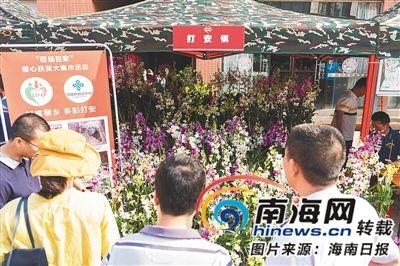 在白沙消费扶贫活动现场,市民选购兰花。 通讯员 黄立华 摄