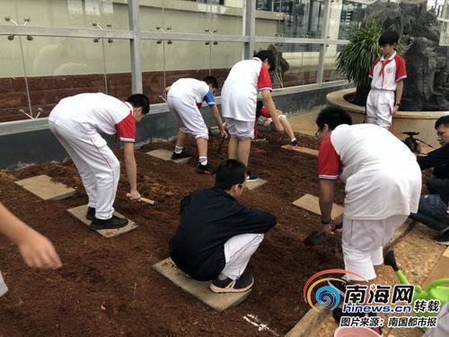 北师大海口附校学生在上劳动技能课