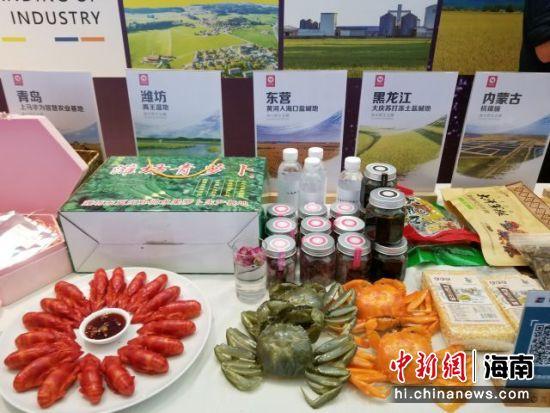 第四届国际海水稻论坛在三亚举办