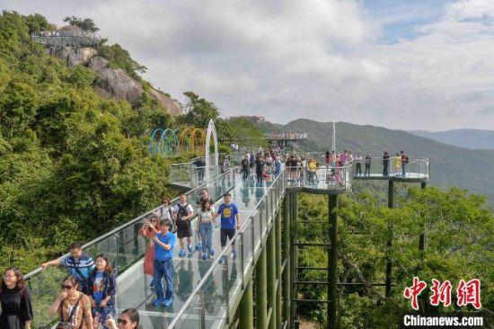 图为近日,游客在三亚亚龙湾热带天堂森林公园内游览。 洪坚鹏 摄