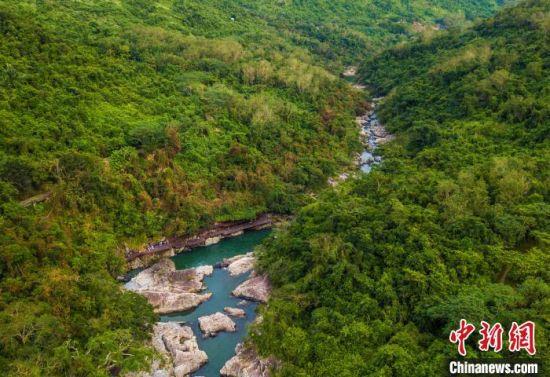 图为海南中部热带雨林。 骆云飞 摄
