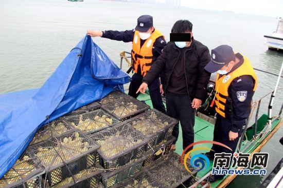 海口支队水上派出所查获违规入岛鹅苗。 通讯员孟伟荣 摄