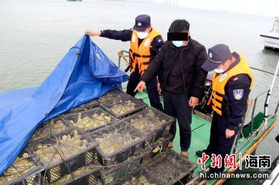 海口支队水上派出所查获违规入岛鹅苗。孟伟荣供图