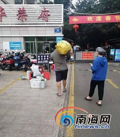 吴剑带领村务人员驾驶一辆装有毛薯的货车奔向海口。吴剑 供图