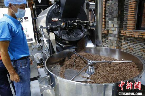 正在烘焙的咖啡豆。 记者王晓斌 摄