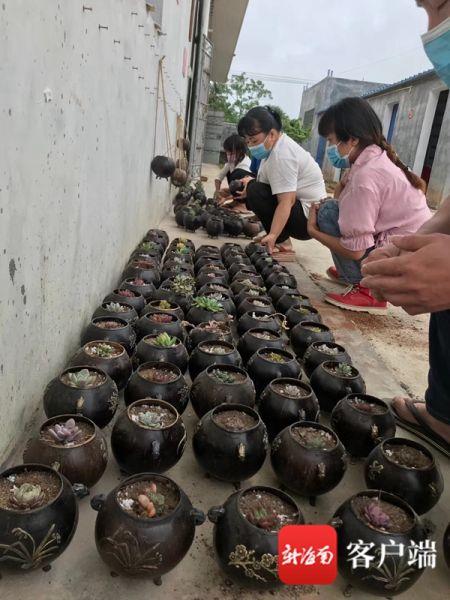 文昌铺前扶贫车间工人们制作出的椰子壳吊篮花盆。叶倩云供图