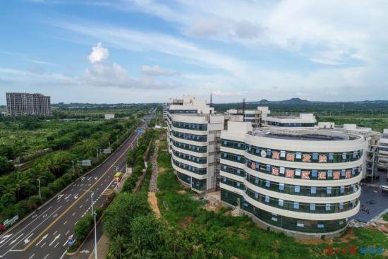 鸟瞰美安科技新城总部经济区项目。海口日报记者 石中华 摄