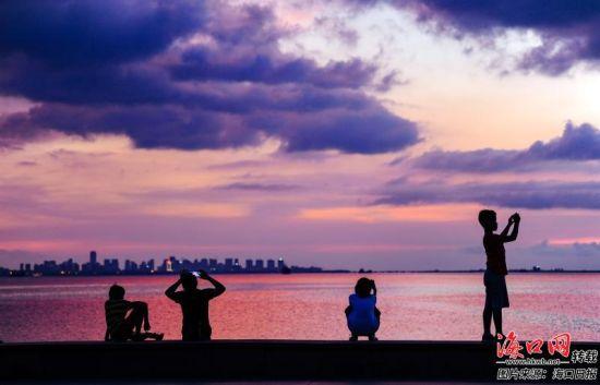 市民游客用手机拍摄傍晚海口湾美不胜收的景色。记者 康登淋 摄