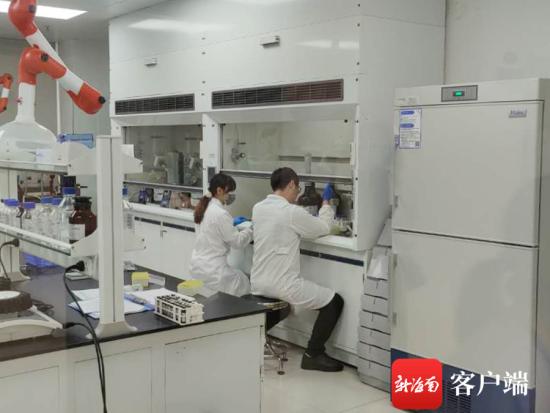 海南省检验检测中心实验室工作人员对样品进行检验 记者 蒙健 摄