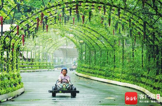 游客在海南槟榔谷黎苗文化旅游区体验田野卡丁车项目。