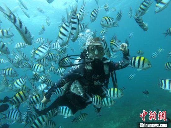 """""""十一""""期间,游客体验蜈支洲岛潜水项目。 陈宏 摄"""