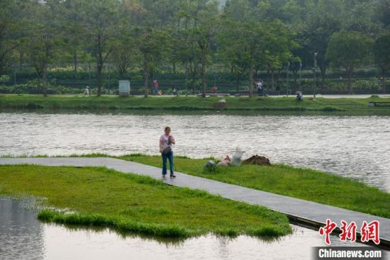 市民在海口美舍河凤翔湿地公园休闲。凌楠 摄