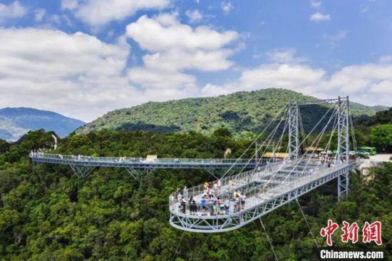 图为呀诺达景区的玻璃栈桥。呀诺达景区供图
