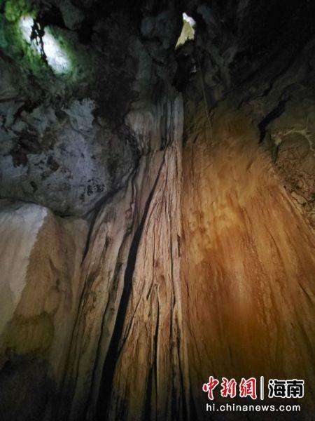临近千龙村的一处溶洞内,榕树根和钟乳石长在了一起。 记者王晓斌摄
