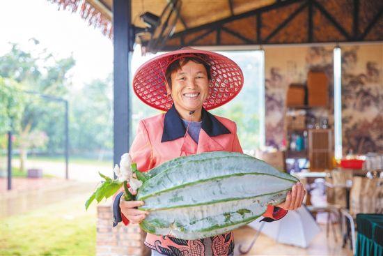 在世界名优花果示范基地,工作人员抱起30多斤重的非洲杨桃南瓜。