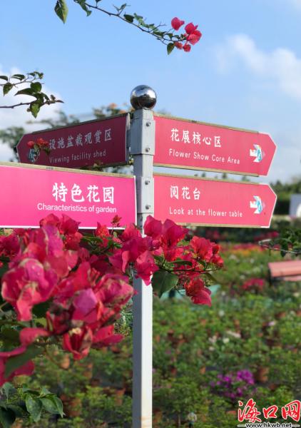 园内设置多个功能区,方便市民游客游玩观赏。陈家煜 摄