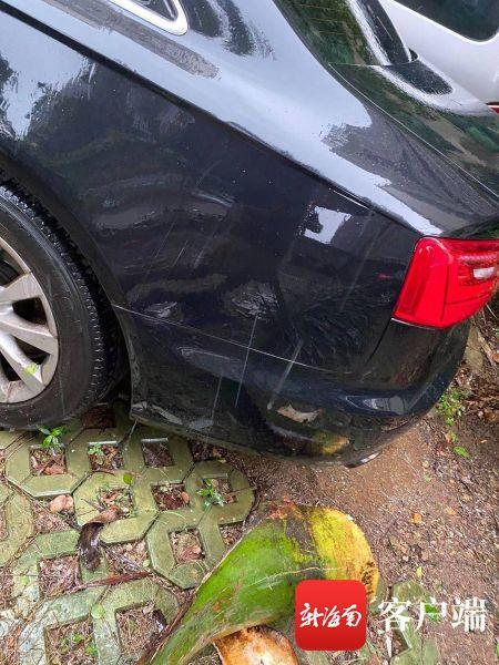 业主车被树枝砸损维修花了2000元 物业迟迟未赔偿