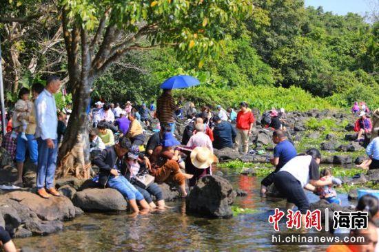 游客在定安久温塘冷泉享受鱼疗、嬉水。定安融媒体中心供图