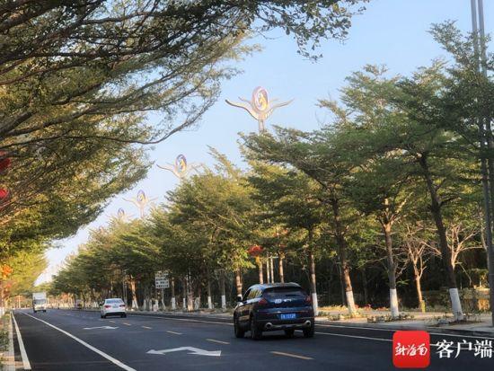 """""""亚沙大道""""上海鸥造型的路灯。记者 谭琦摄"""