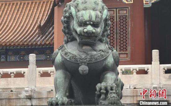 故宫中的竖耳铜狮 董泽宇 摄