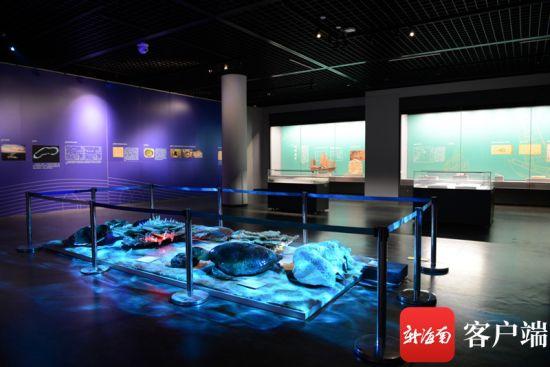 """来自海南省博物馆的""""涨海推舟 千帆竞渡――南海水下文化遗产大展""""在青岛市博物馆展出。海南省博物馆供图"""