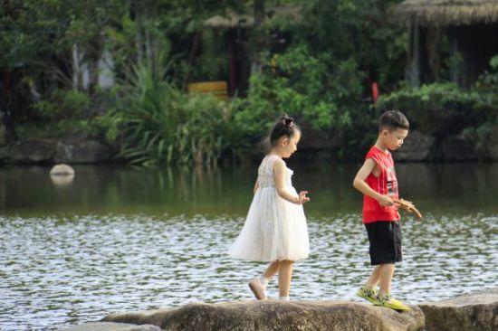 游客漫游雨林 景区供图