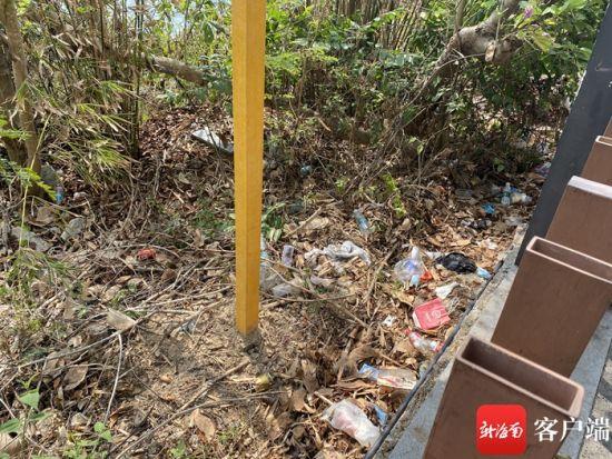 太阳湾路旁垃圾随处可见。记者 张宏波 摄