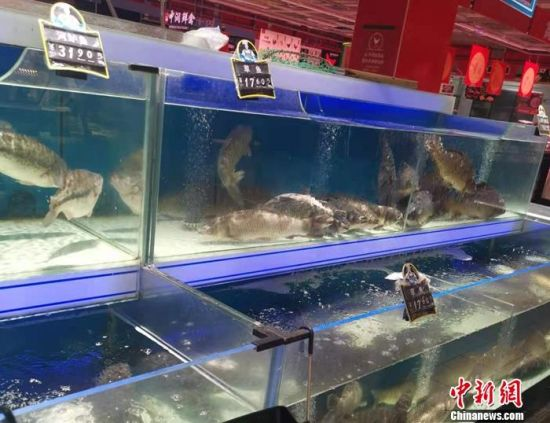 北京市丰台区一家超市的水产区。 中新网记者 谢艺观 摄