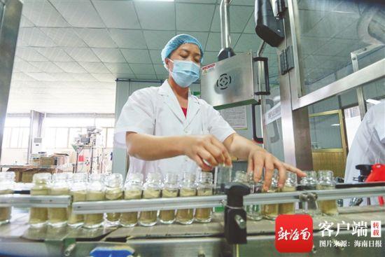 在东昌胡椒加工厂中,工人操作现代化胡椒生产线。海南日报记者 封烁 摄