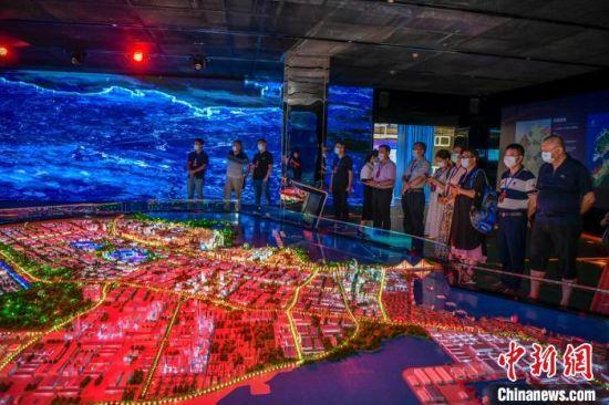 海外华文媒体代表参观洋浦经济开发区展示馆。 骆云飞 摄