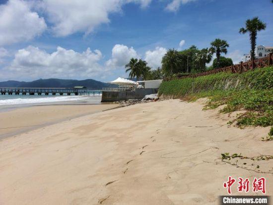 亚龙湾岸线被侵蚀的沙滩。 王晓斌 摄