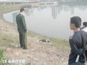 一女昨日海口跳海流汗身亡溺水美女图片