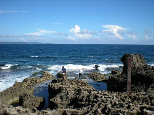 南澳岛距离台湾高雄不足一百六十海里,汕头与高雄之间航行时间只需