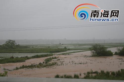 海南临高加莱境内数千亩农田被淹