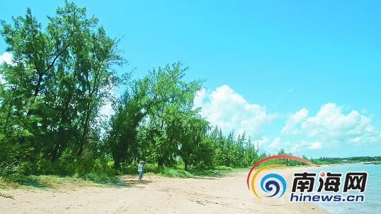 解放前,海南岛饱受风沙之苦.