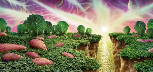 絕美蔬菜水果風景畫(5)