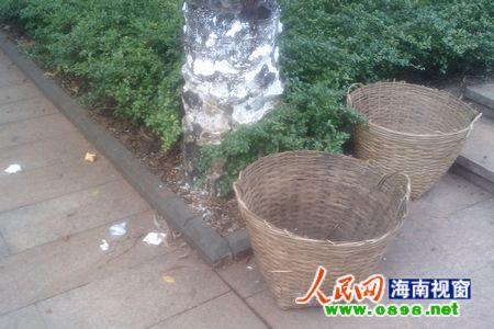 有人还将垃圾丢地上; 公园垃圾桶距离图片分享;