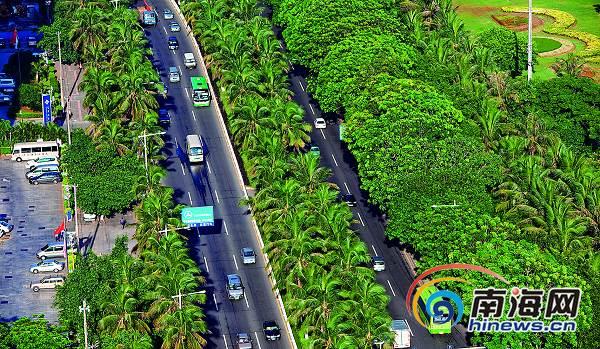 椰树,榕树等乡土树种掩映海口滨海大道,构成了一道独特的椰风海韵景观